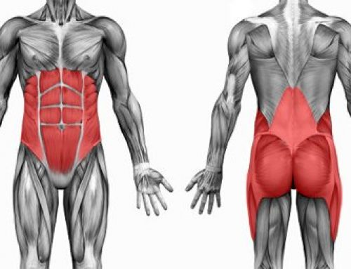 3 Great core exercises you should incorporate into your workout