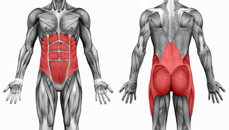Three best exercises you can do for your core