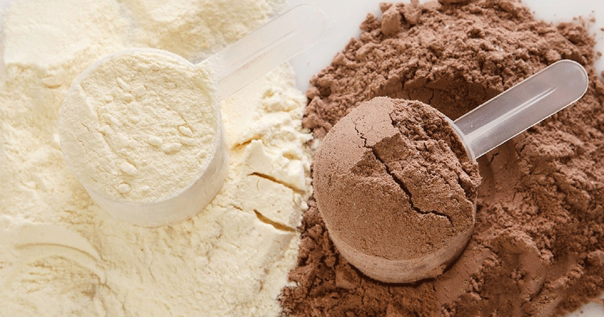 Protein powders main image - the variations of protein powders
